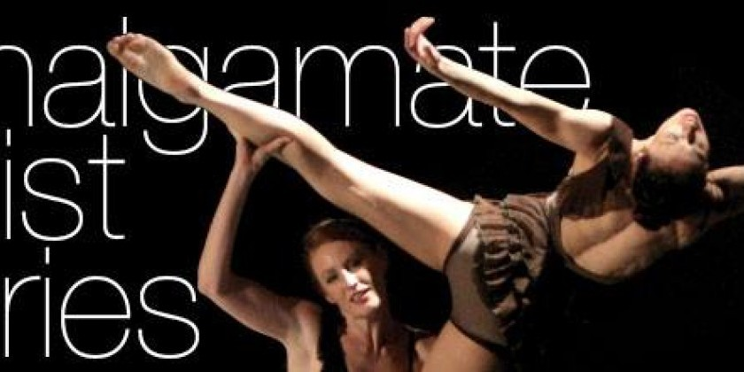 Intern for Amalgamate Dance Company this Spring