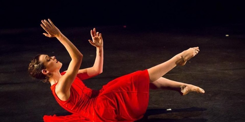 Dance Gallery Festival Continues at Ailey Citigroup