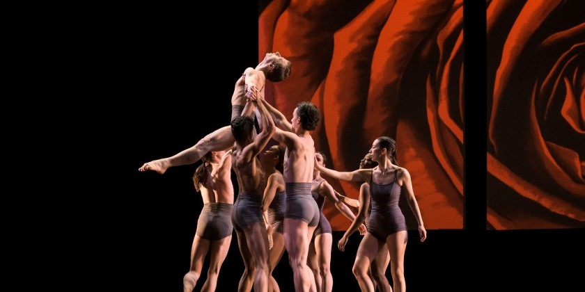 IMPRESSIONS: Stephen Petronio Company at NYU Skirball including Choreography from Merce Cunningham and Rudy Perez