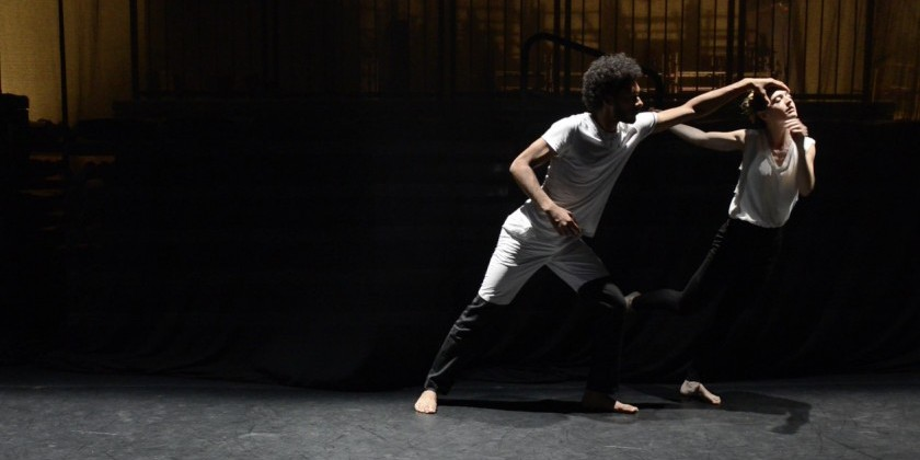 "Impressions of Danaka Dance's ""Thousand Plateaus"""