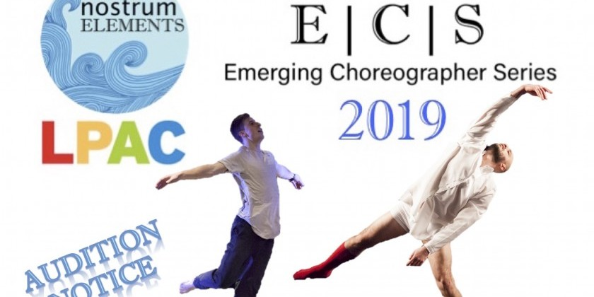 Emerging Choreographer Series 2019 Audition