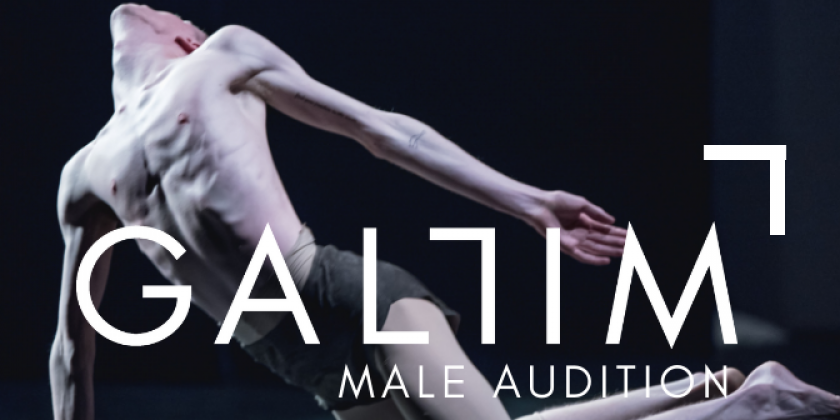 Gallim 2019 Male Auditions