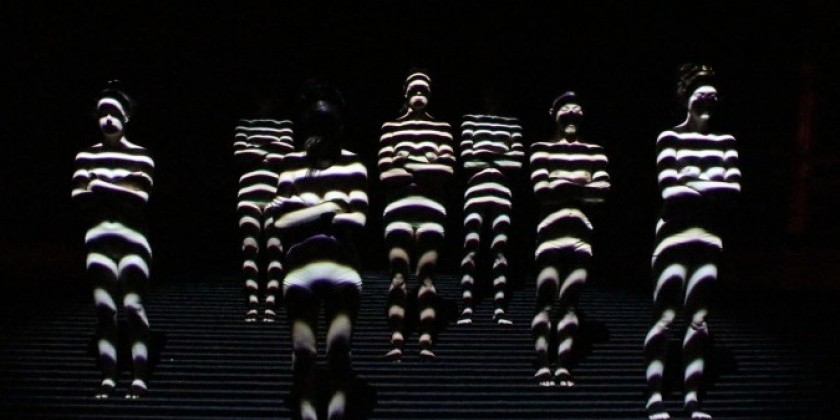 "LEIMAY'S ""Becoming-Corpus"" premieres  at BAM FISHER Sept 12th-15th, 2013 (DanceUpCloseVideo)"