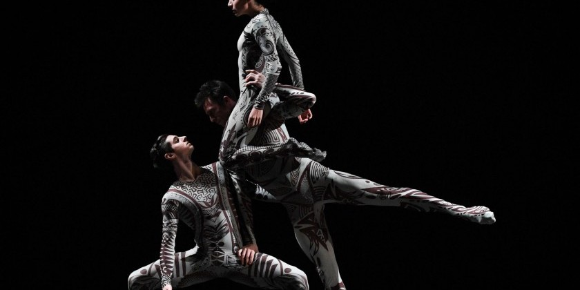 IMPRESSIONS: APAP Showcase at Peridance Capezio Center