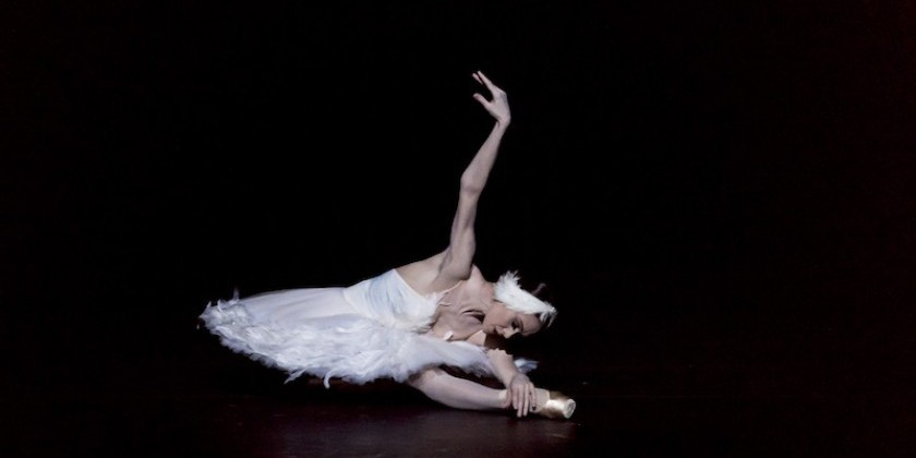 Impressions of the Mariinsky Ballet's Tribute to Maya Plisetskaya