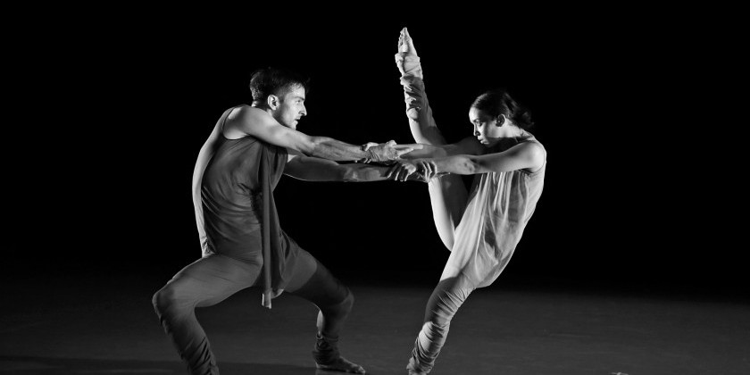 Apply Now: Perform & Collaborate at Peridance Capezio Center