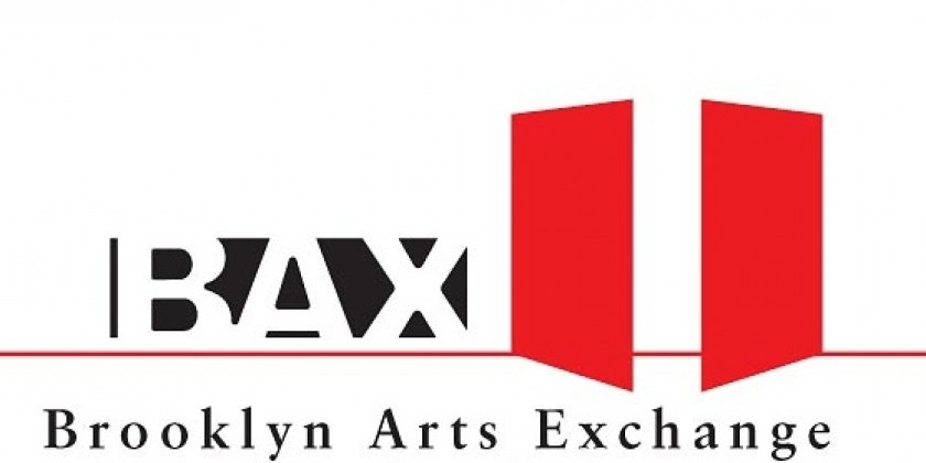 BAX 2018 Space Grant Application