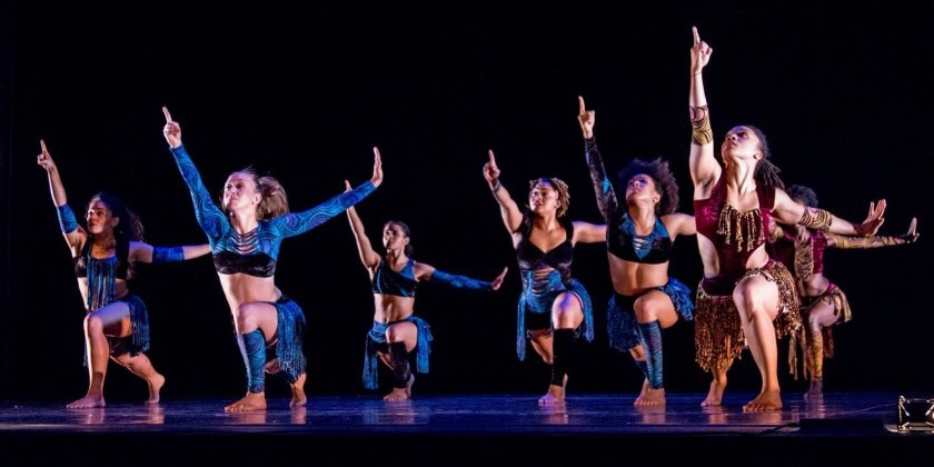 The Dance Enthusiast Meets the 2014 Bessie Award Nominee Nora Chipaumire (Part 3)