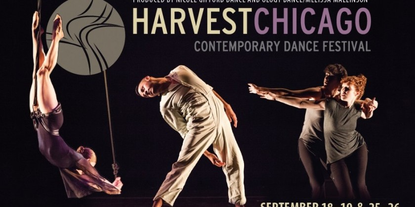 TDE Asks The Producers of Harvest Chicago Contemporary Dance Festival (HCCDF)
