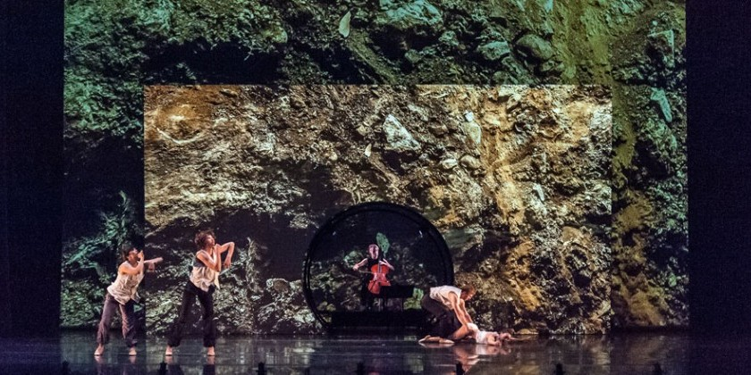 "BAM Next Wave Festival: ODC/Dance presents ""boulders and bones"""