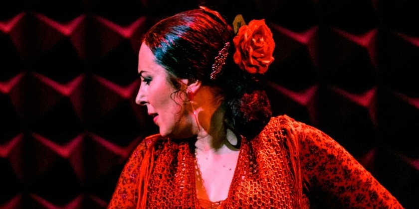 A POSTCARD FROM FLAMENCO ARTIST SONIA OLLA... OLE!