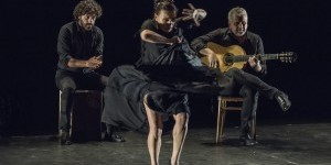 IMPRESSIONS: Soledad Barrio & Noche Flamenca in Íntimo at The Joyce Theater