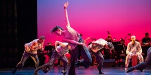 "Impressions of: Malpaso Dance Company's ""Dreaming of Lions"" at BAM's Harvey Theater"