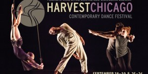TDE Asks Chicago: Chatting with the Producers of Harvest Chicago Contemporary Dance Festival (HCCDF)