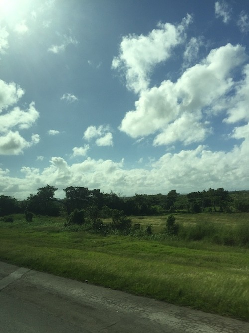 The green countryside in Cuba