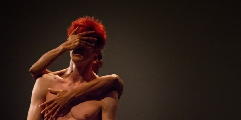 """Translate (voices of dance)"" at Dixon Place"