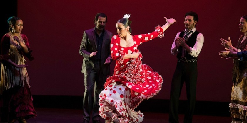 TDE Asks Carlota Santana of Flamenco Vivo about the Company's Upcoming BAM Season