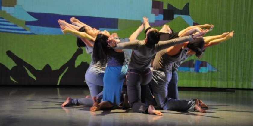 """Artists in Motion"" Convene in Alison Cook Beatty Dance's Fall Season"