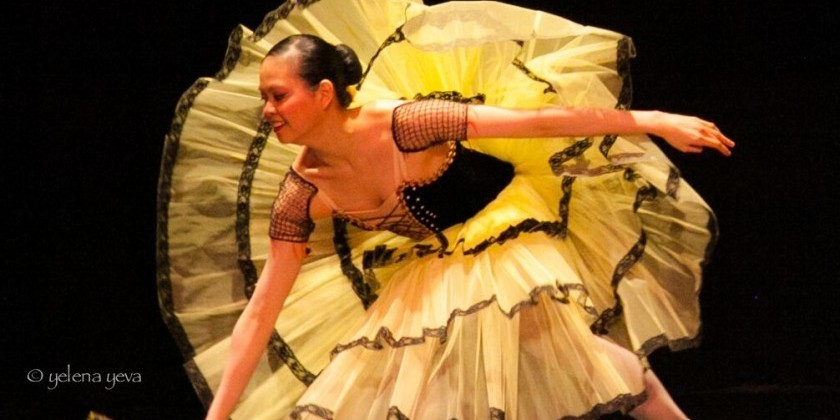 Part-Time Arts Admin Needed Immediately for Valentina Kozlova Dance Conservatory
