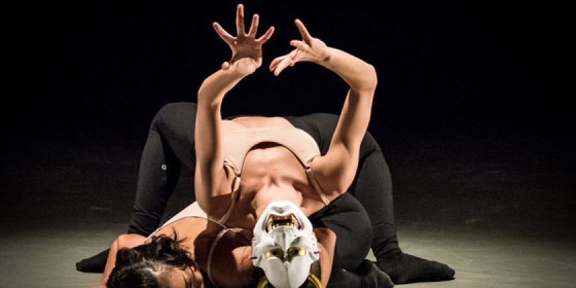 Azul Dance Theatre Presents VISION