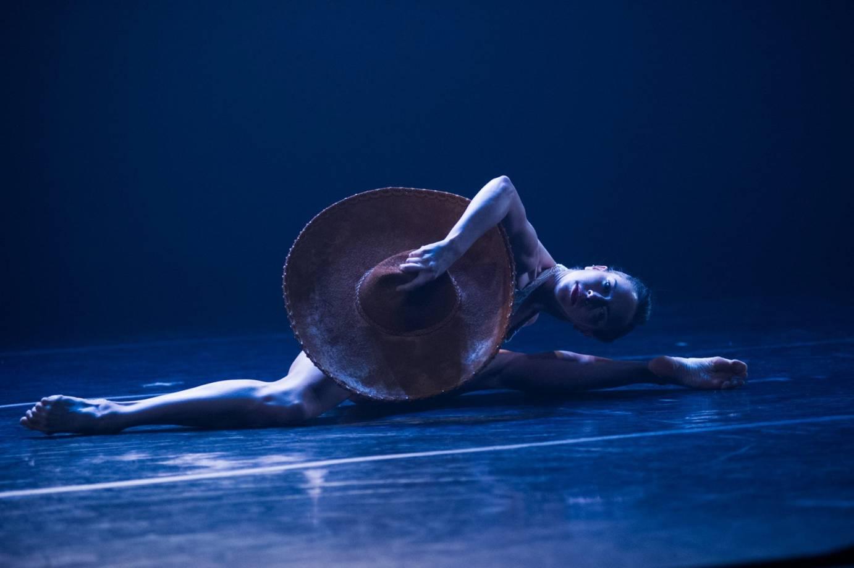 Dance news ballet hispnico cal state la collaborate to bring diana winfree in con brazos abiertos photo credit paula lobo malvernweather Images