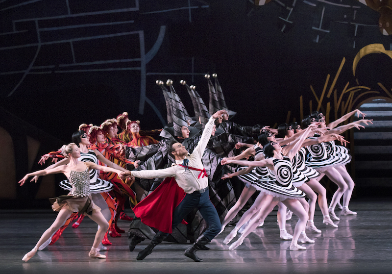 A large cast of the ballet lead by Taylor Stanley in a red cape smile and extend in wide arabesque lunges