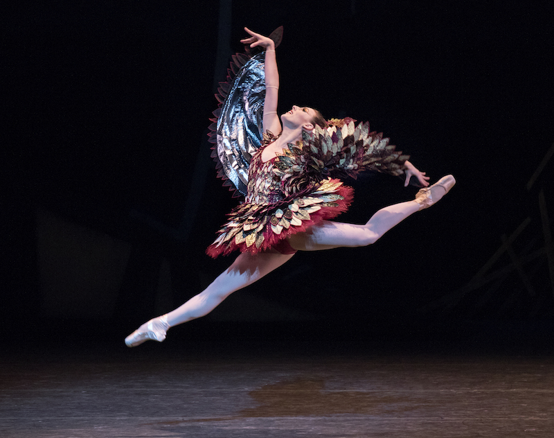 Tiler Peck in a bronze and gold Cuckoo Bird costume as she leaps high in the air her back leg bent and front extended