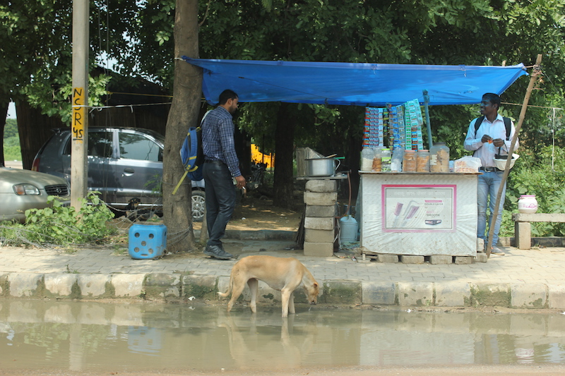 Two men talk under a make-shift tent that houses a fruit stand. A dog drinks from a flooded street.